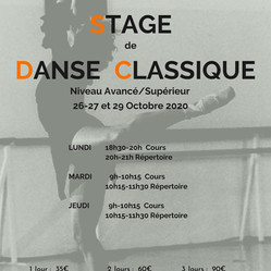 Flyer Stage Octobre 2020.jpg