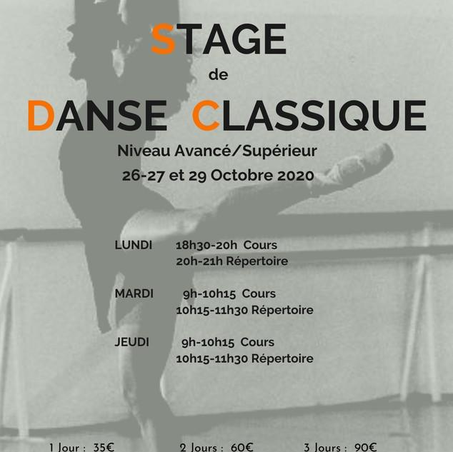 Flyer Stage Octobre 2020.jpg