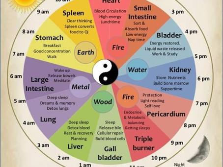 אורח חיים בריא עם השעון הסיני