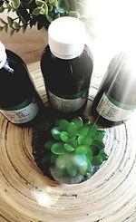 צמחים.jpg