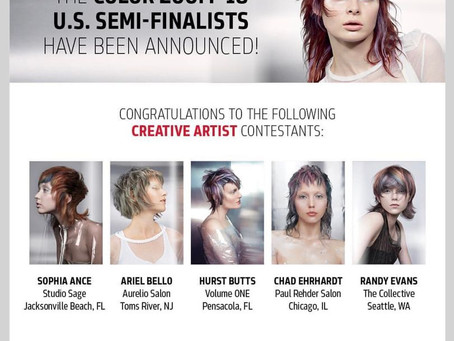 MODERN SALON: Goldwell Announces 2018 Color Zoom Challenge U.S. Semi-Finalists