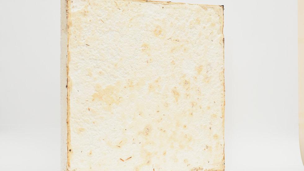 Mycelium insulation panel