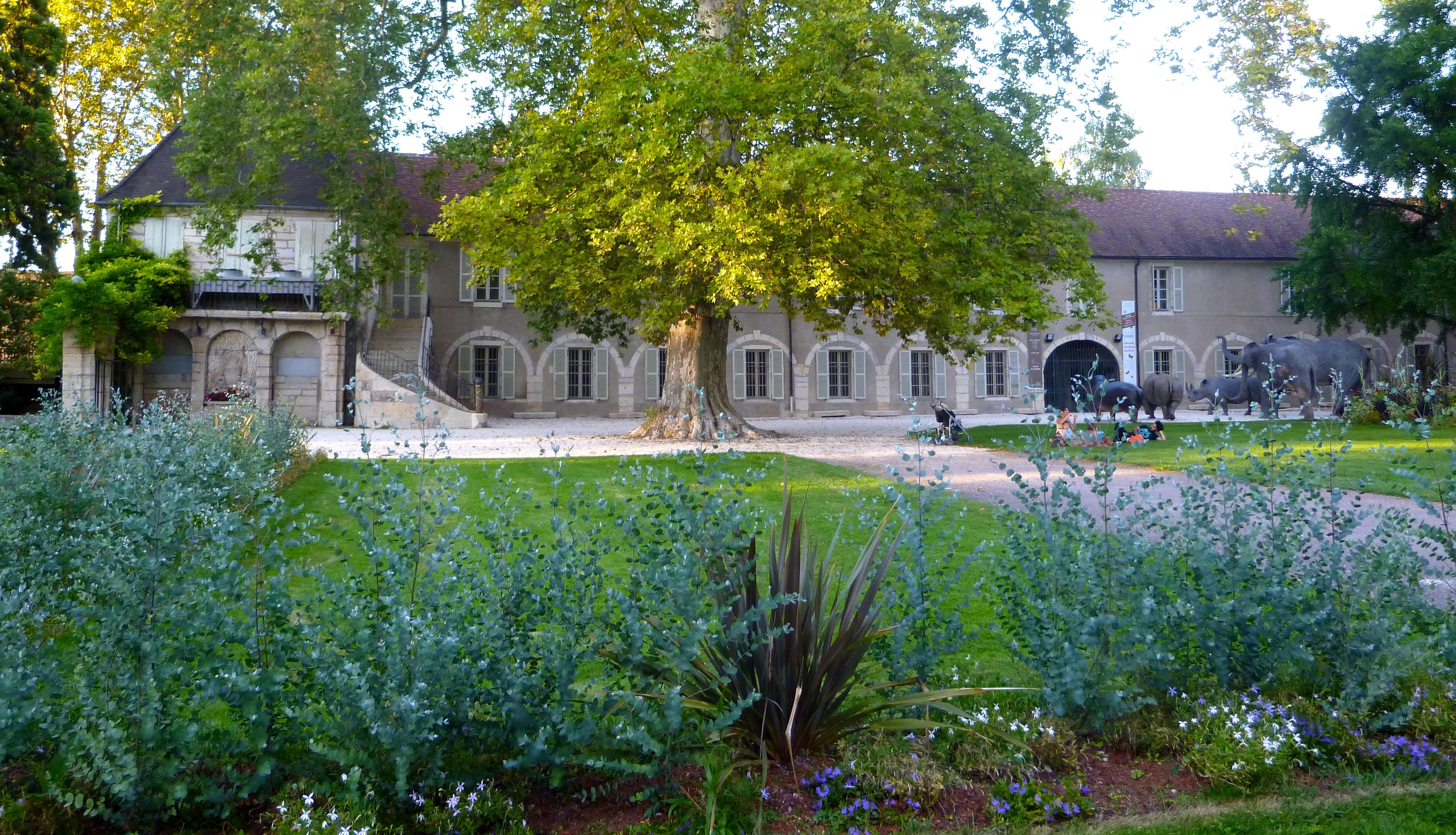 Jardin de l'Arquebuse Dijon - Photographie de E Moreau pour Les Visites du Jeune Téméraire