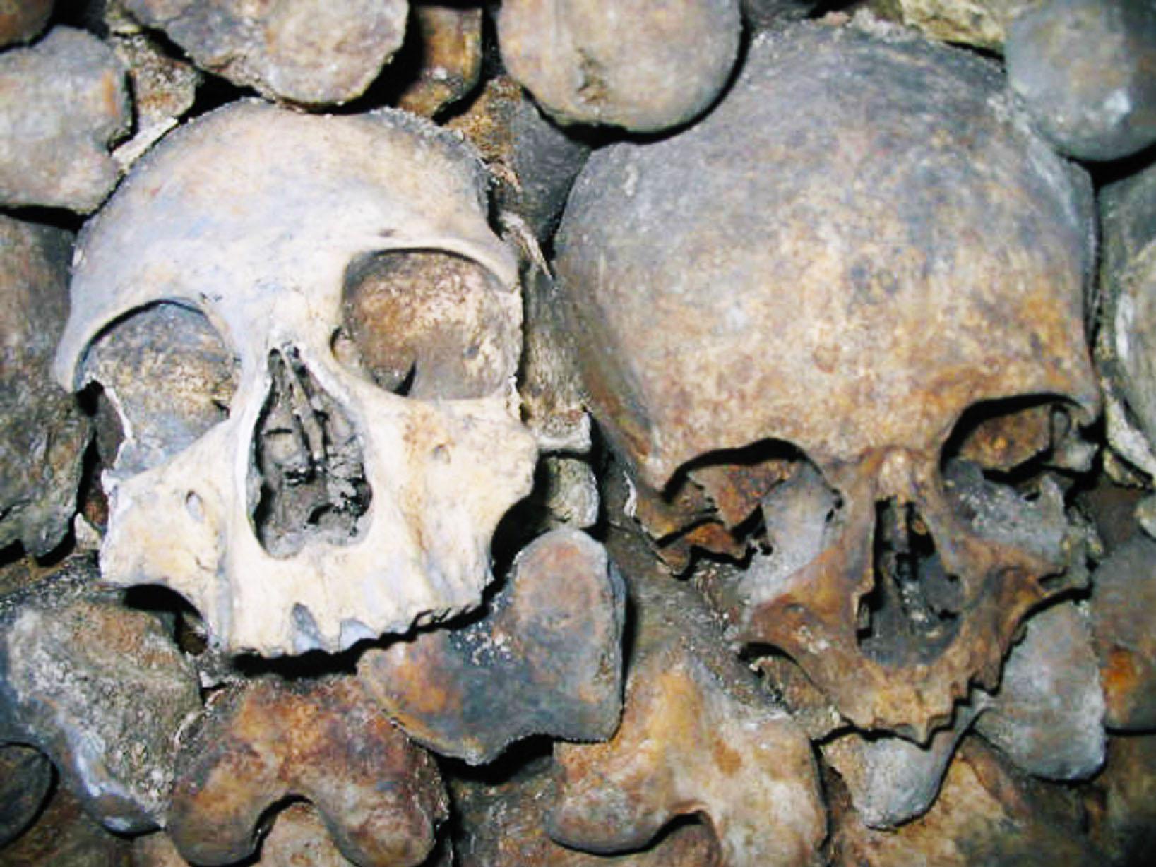 crânes des catacombes de Paris - Photographie de E Moreau pour Les Visites du Jeune Téméraire