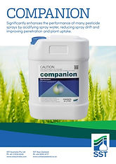 SST Companion Brochure.jpg