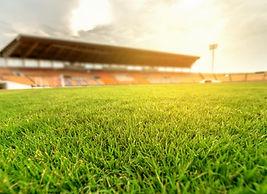 grass stadium.jpg