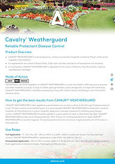 Adama Cavalry Weatherguard Brochure.jpg