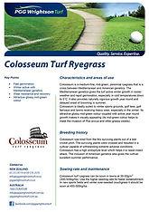 PGGW Colosseum Perennial Ryegrass Brochu