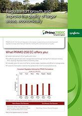 Syngenta Primo 250EC Brochure.jpg