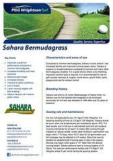 PGGW Sahara Unhulled Couch Brochure.jpg