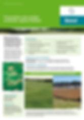 Bayer Banol Brochure.jpg
