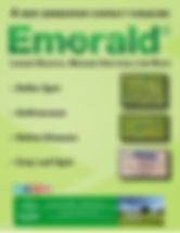 Campbells Emerald Brochure.jpg