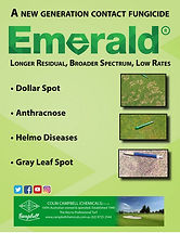 Campbells Emerald Brochure.jpg