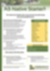 GTS AS Native Starter Brochure.jpg