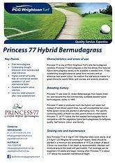 PGGW Princess 77 Hybrid Bermudagrass Bro