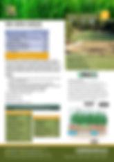 GTS NK MIni Maxx Brochure.jpg