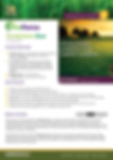 ProForce Tombstone Duo Brochure.jpg