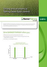Syngenta Banner Fairway Brochure.jpg