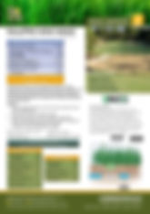 GTS Nitro Pro MIni Maxx Brochure.jpg