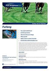 PGGW Furlong Race Track Blend Brochure.j