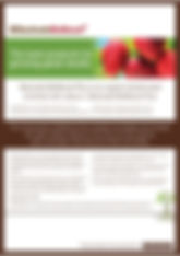 Bactivate BioBoost Plus Brochure.jpg