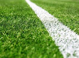White Line on Sports Field.jpg