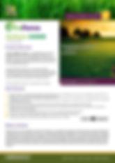 ProForce Solitaire Brochure.jpg