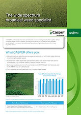 Syngenta Casper Brochure.jpg