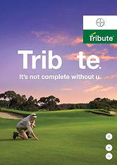 Bayer Tribute Brochure.jpg
