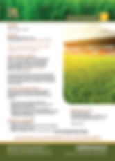 OSA Silica Brochure.jpg