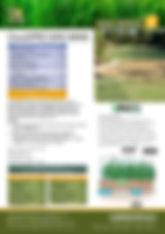 GTS Couch Pro MIni Maxx Brochure.jpg