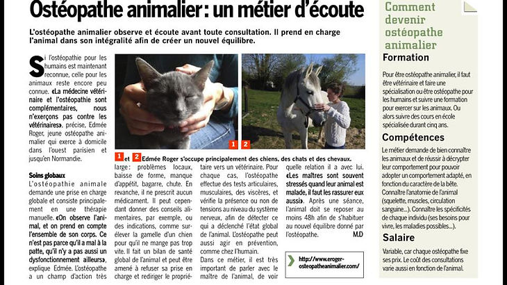 article ostéopathie animale