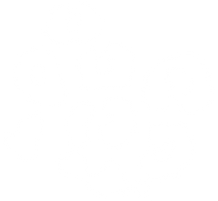 SMALL-WHITE-LEOPARD-PRINT.png