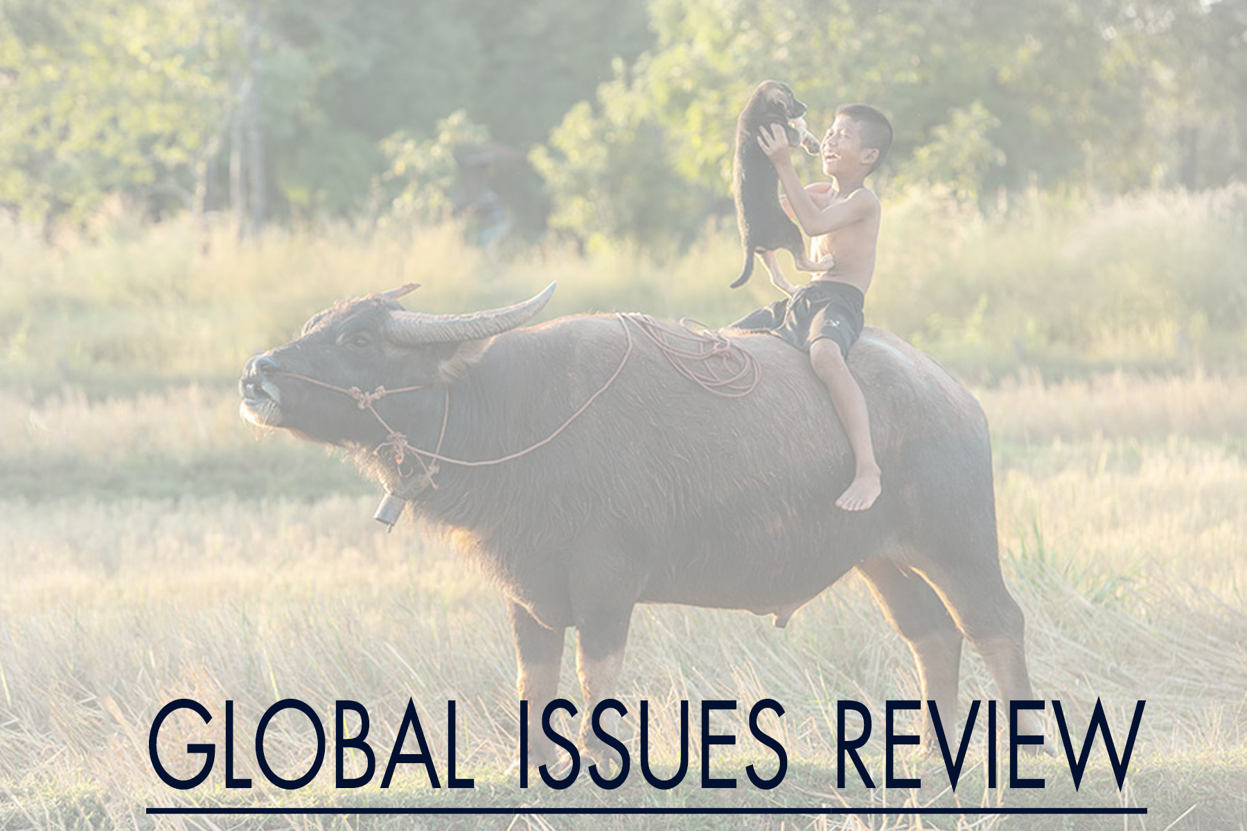 Global Issues Review