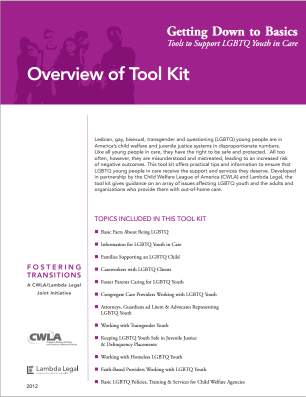 LGBTQ Youth Tools and Best Practices