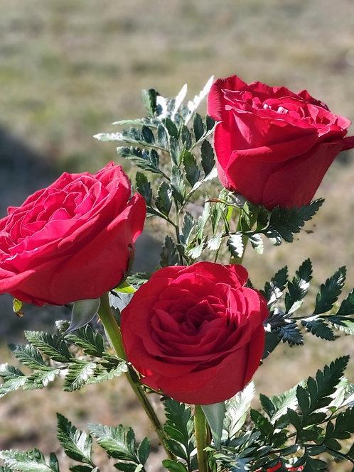 Valentine's Rose Bud Vase