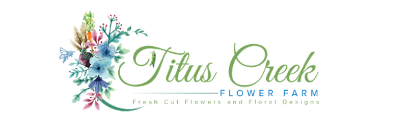 Copy of Copy of Titus Creek Logo lg.png