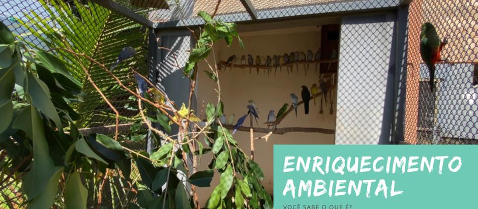 Você sabe o que é Enriquecimento Ambiental?