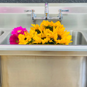 Our shiney new sink!
