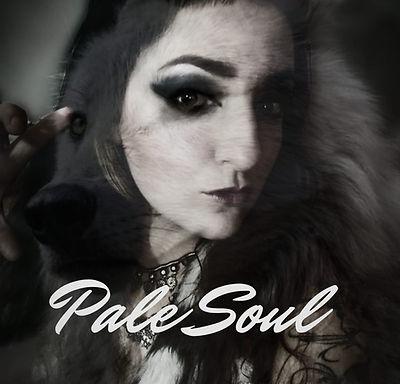 "REVENGIN: ""Pale Soul"" teaser for a new song released!"