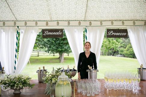 Conservatory wedding Bar