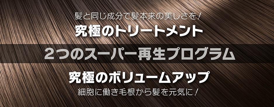 banner-saisei.jpg
