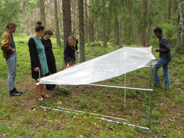30 rainoutshelters and TOMST microclimate loggers installed