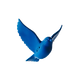 bluebird_solid-removebg-preview (2).png