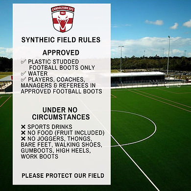 Synthetic Field Rules.jpg