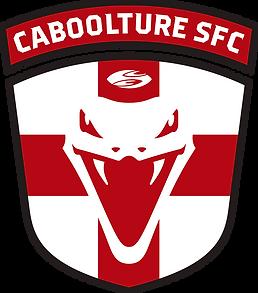 CSFC_Logo_Col png.png