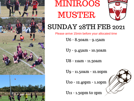 MiniRoos Muster 2021
