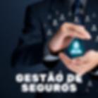 Gestão_de_seguros.png