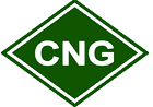 CNG-prices-in-D11775_edited.png