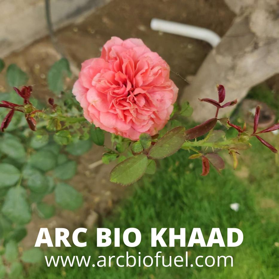 ARC BIO KHAAD (11).png